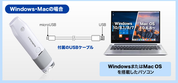 Windows・Macの場合