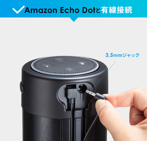 Amazon Echo Dotと有線接続